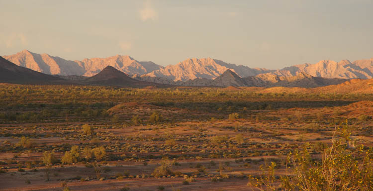 Cabeza Prieta mountains seen from Tule Well